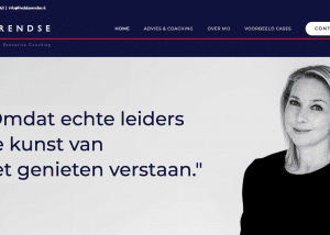 Frieda Barendse Advies & Executive coaching